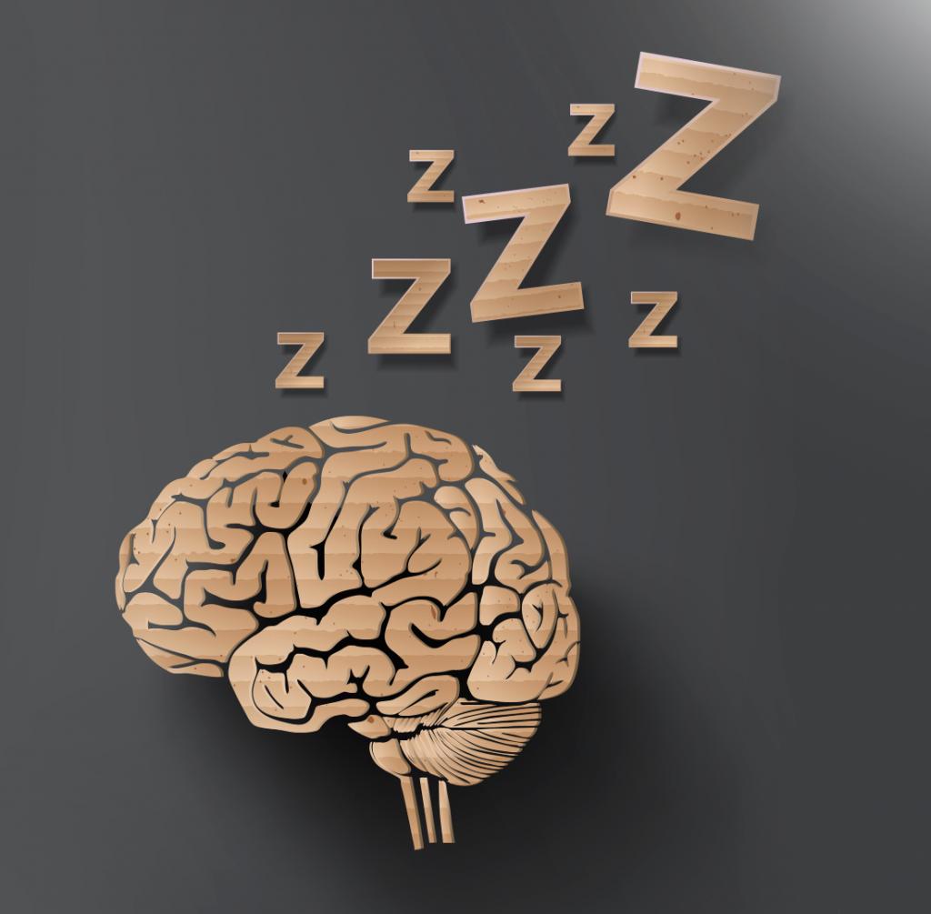 Descubre que le puede pasar a tu cerebro sino descansas adecuadamente y comienzas a aumentar sueño profundo